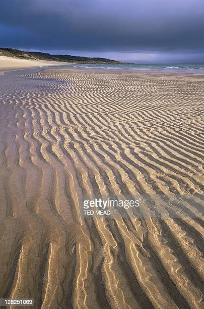 sand ripples on beach in killiecrankie bay, flinders island, tasmania