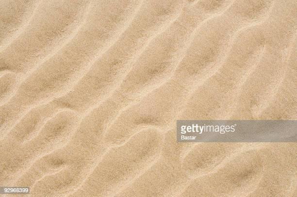 Ondulations de sable