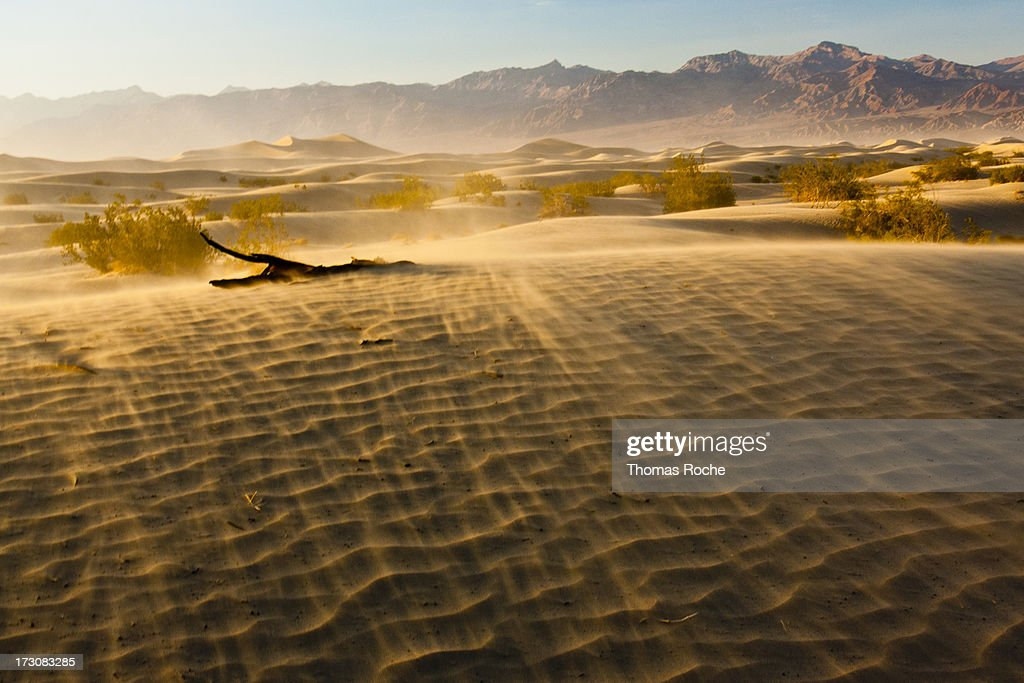 Sand storm in the dunes