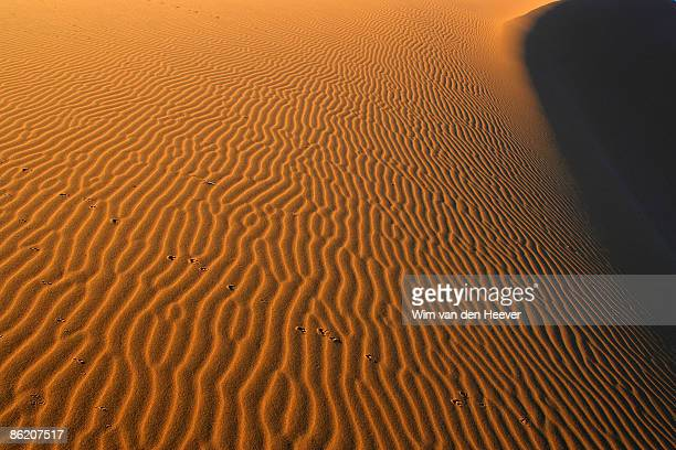 Sand striations of Namibia coast