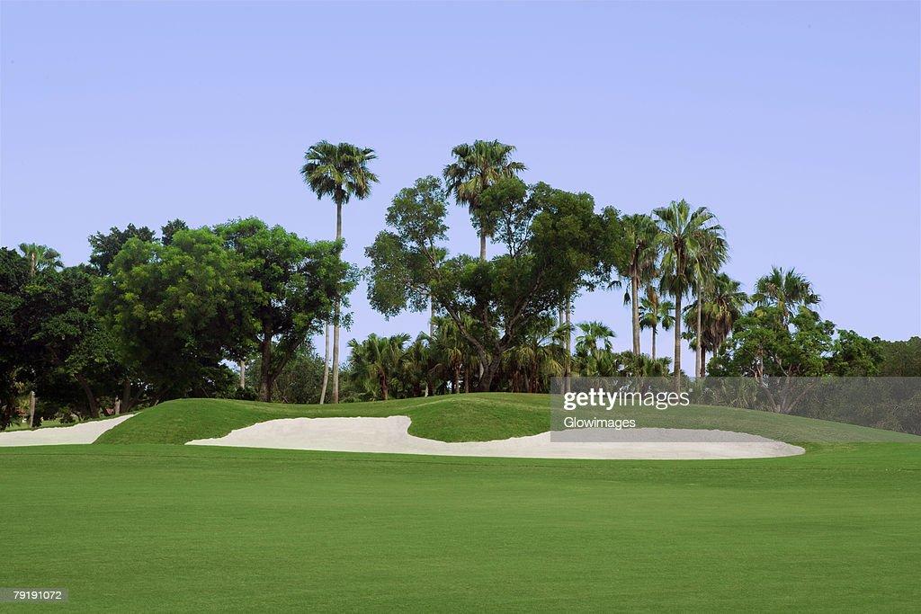 Sand trap in a golf course : Foto de stock