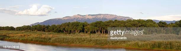 Sandia Mountain & Rio Grande Panoramic