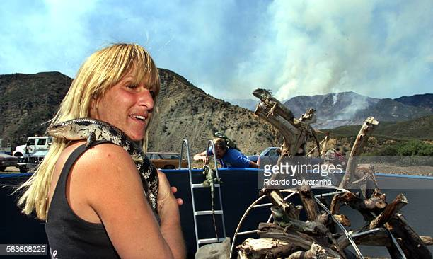Sandra Lawrence holding an Australian Blue Tongue Skink left and Dennis Elkie with a green Iguana are care takers of this property south of the Sespe...
