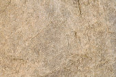 Detailed textured background of sandstone.