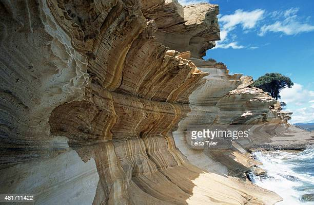 Sandstone cliffs weathered by wave action on the northern shores of Maria Island a former penal settlement on Tasmania's southeast coast Once a low...
