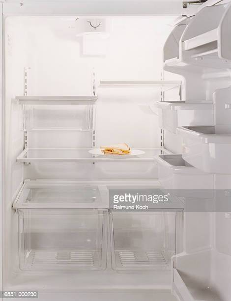 Sandwich in Empty Refrigerator