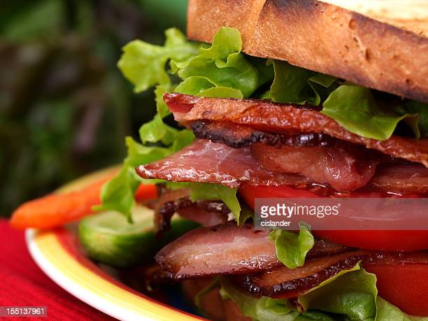 BLT sandwich on toast