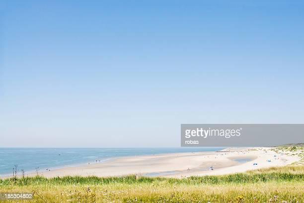 Sandy beach and dunes at Zeeland, The Netherlands