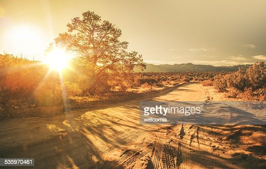 Sandy Country Road : Stock Photo