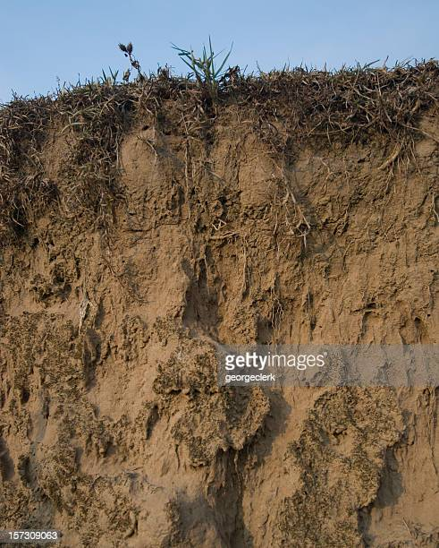 Sección transversal de arena