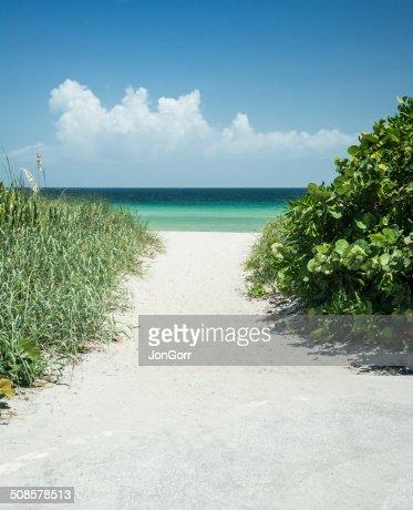 Sandy percorso accesso alla spiaggia dell'oceano in un giorno d'estate : Foto stock