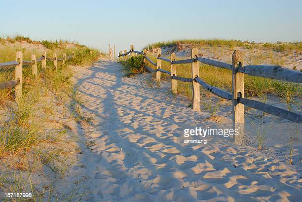 Promenade de la plage de sable