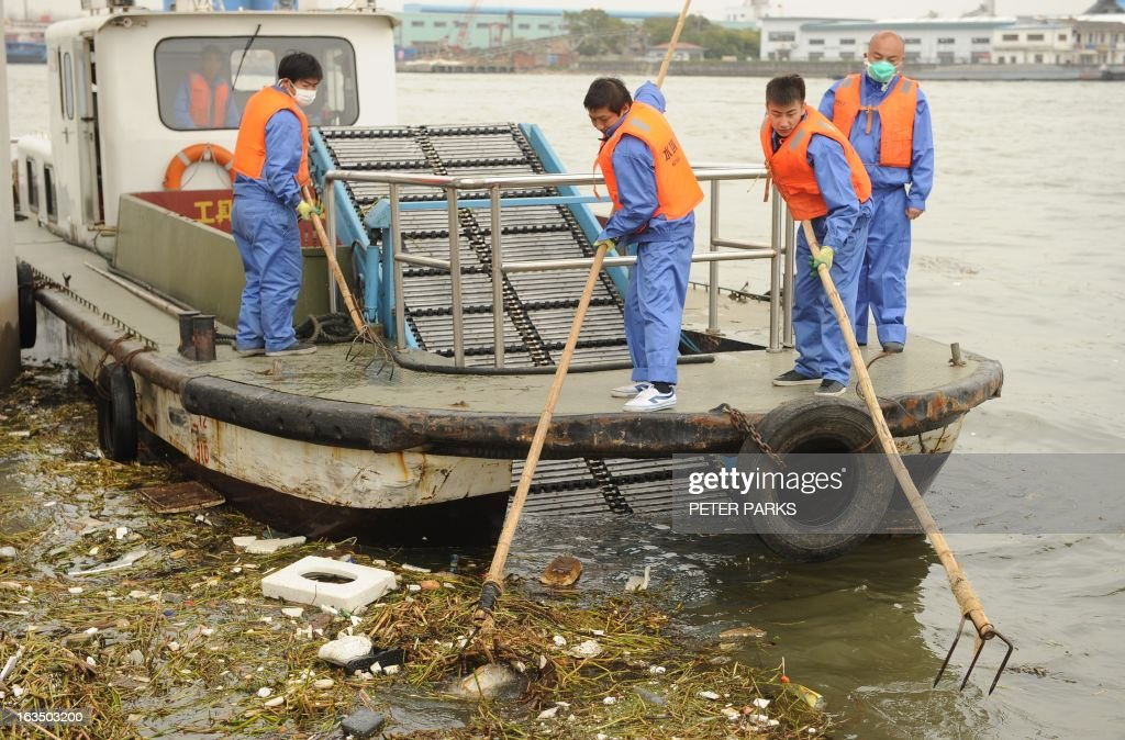 Sanitation workers collect a dead pig from Shanghai's main waterway on March 11, 2013. Nearly 3,000 dead pigs have been found floating in Shanghai's main waterway, the Chinese city's government said on March 11 as residents expressed fears over possible contamination of drinking water. AFP PHOTO/Peter PARKS