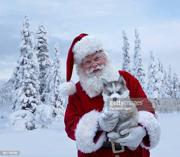 Santa Claus holding a husky puppy