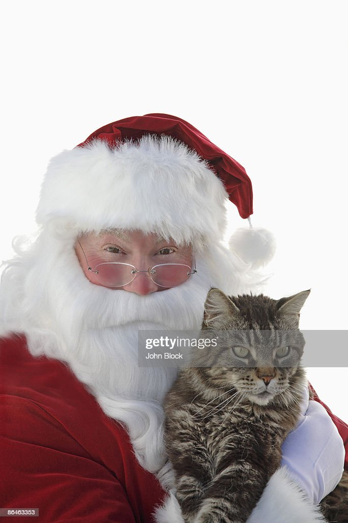 Santa Claus holding cat : Foto de stock