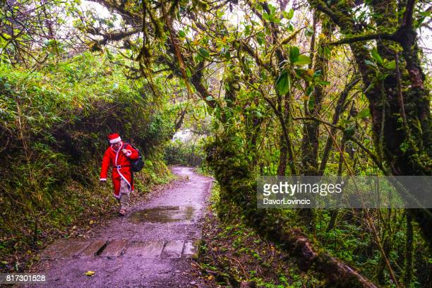 Santa Claus in Monteverde Cloud forest , Costa Rica