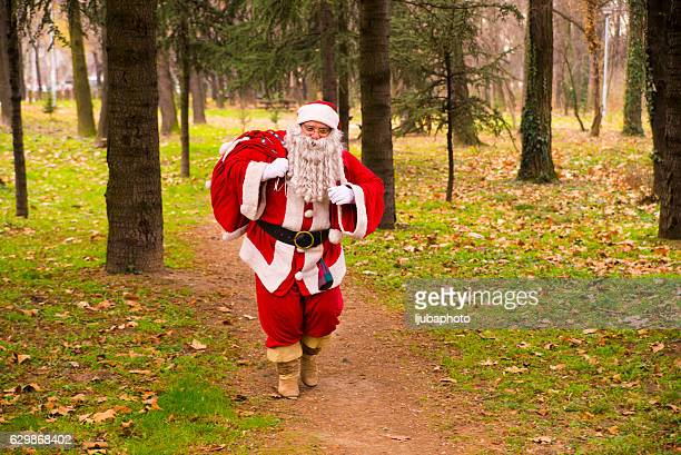 Santa Claus  walking in forest  With A bag Of Gifts