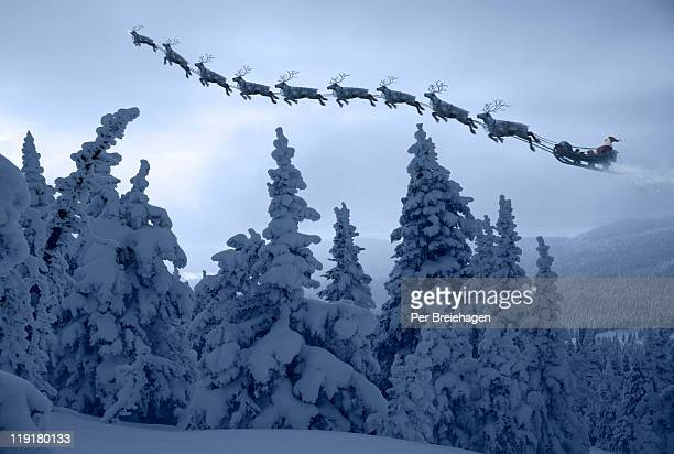 Santa Clause and his reindeer above a snowy forest