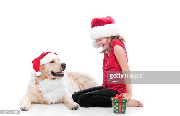 Santa chien