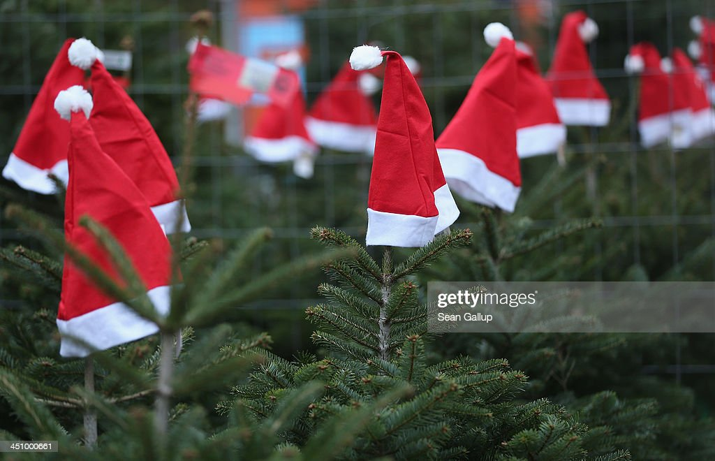 Santa hats decorate Christmas trees on display at an outdoor Christmas tree market on November 20, 2013 in Berlin, Germany. With Christmas still over a month away, the city of Berlin is already busy preparing for the holiday.