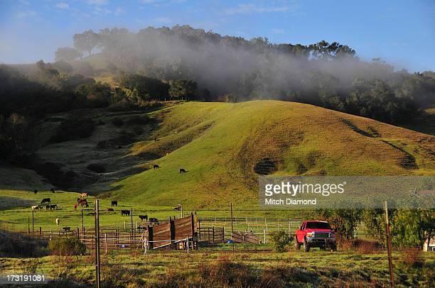 Santa Ynez farm