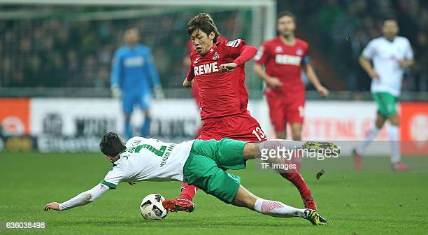 Santiago Garcia of Bremen and Yuya Osako of Cologne battle for the ball during the Bundesliga match between Werder Bremen and 1 FC Koeln at...