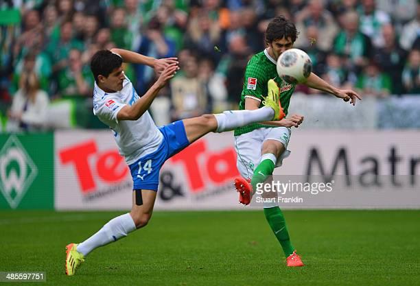 Santiago Garcia of Bremen is challenged by Tarik Elyounoussi of Hoffenheim during the Bundesliga match between Werder Bremen and 1899 Hoffenheim at...