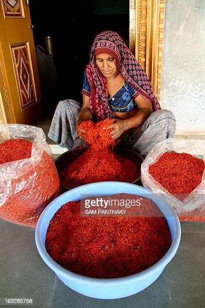 Santokben Valjibhai Patel the wife of Indian farmer Valjibhai Rudabahi Patel sorts saffron flowers harvested from their field in the village of Jadia...