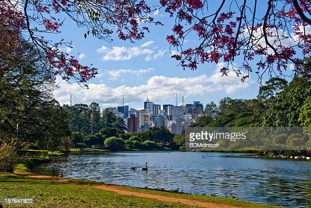 Sao Paulo, Brazil, skyline