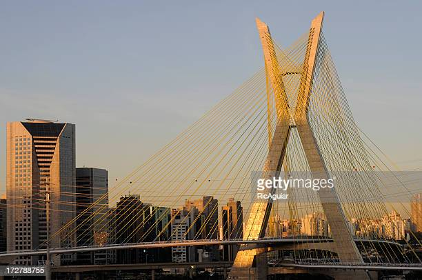 Sao Paulo bridge on a summers evening