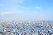 Look down Sapporo City from Maruyama Mountain in Winter