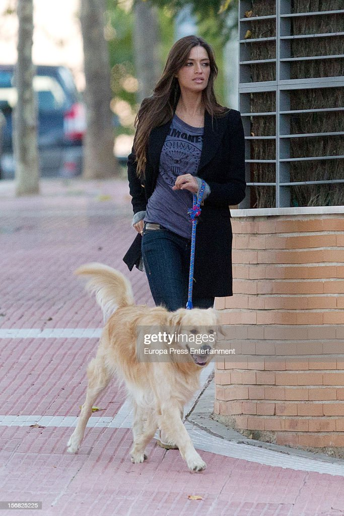 <a gi-track='captionPersonalityLinkClicked' href=/galleries/search?phrase=Sara+Carbonero&family=editorial&specificpeople=5723366 ng-click='$event.stopPropagation()'>Sara Carbonero</a> is seen going for a walk with her dog on November 21, 2012 in Madrid, Spain. on November 21, 2012 in Madrid, Spain.