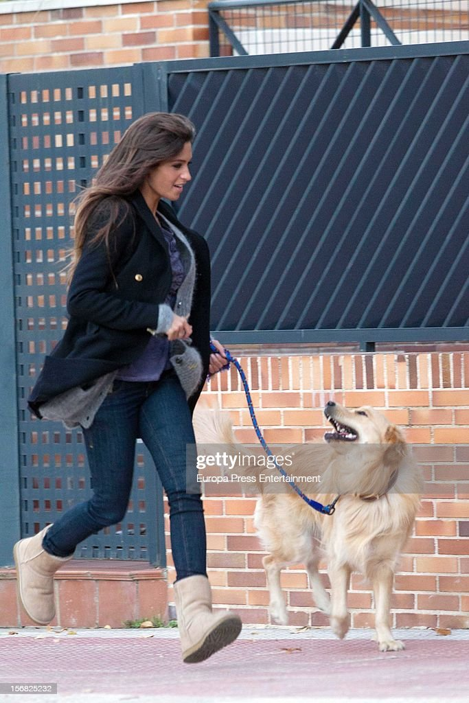Sara Carbonero is seen going for a walk with her dog on November 21, 2012 in Madrid, Spain. on November 21, 2012 in Madrid, Spain.