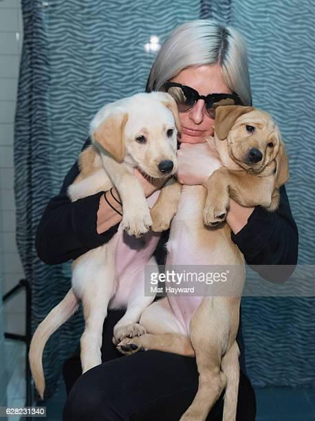 Sarah Barthel of Phantogram holds two Motley Zoo rescue puppies backstage during Deck The Hall Ball hosted by 1077 The End at KeyArena on December 6...