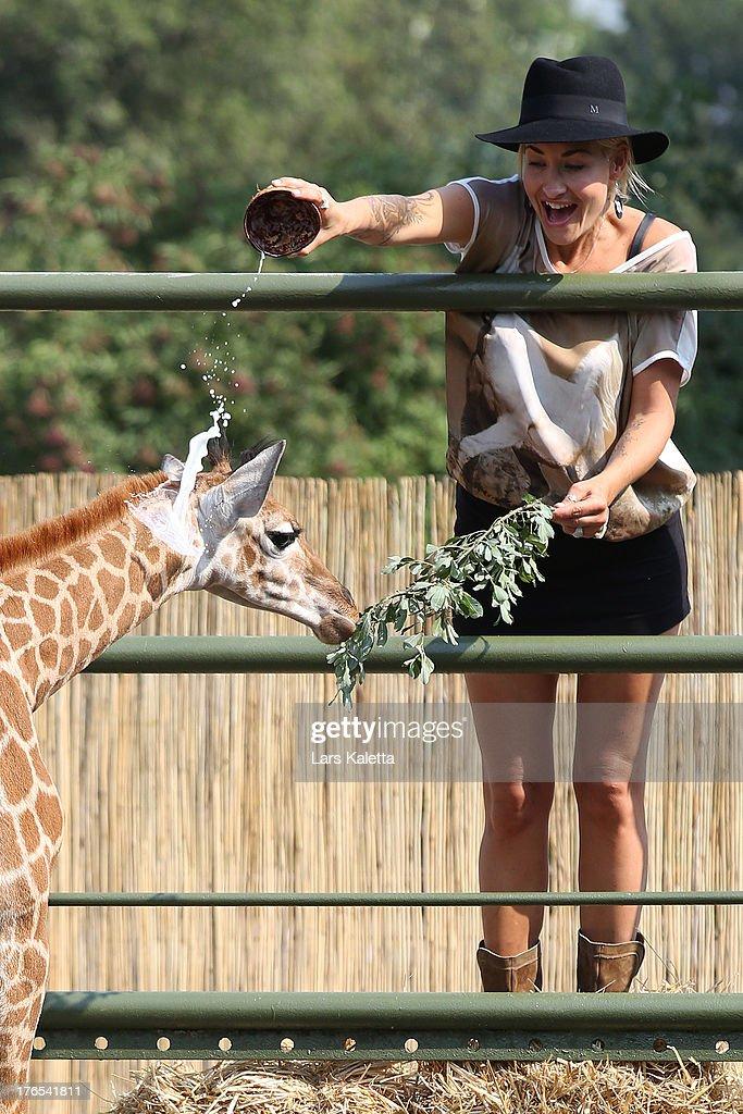 Sarah Connor christens a baby giraffe named Kerstin at Serengeti Park on August 15 2013 in Hodenhagen Germany