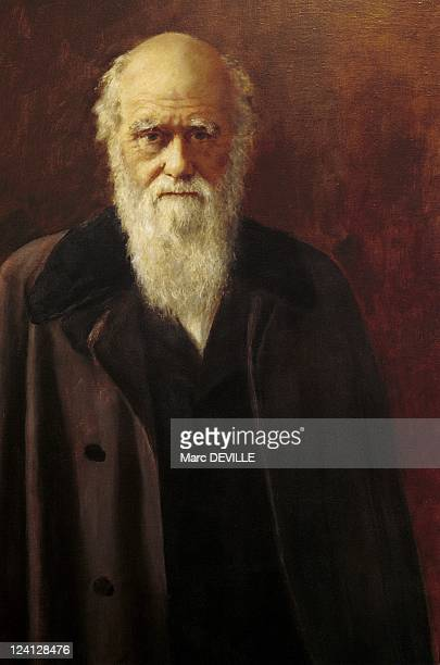 Sarah Darwin at Down house the house of Charles Darwin In United Kingdom On October 13 1998 Portrait of british naturalist charles darwin by John...