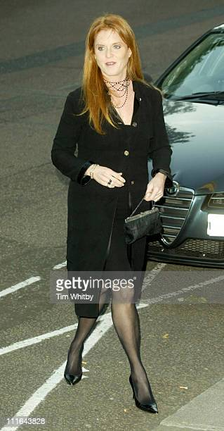 Sarah Ferguson Duchess of York during Salvatore Ferragamo Dinner Fashion Show Arrivals at Italian Embassy in London Great Britain