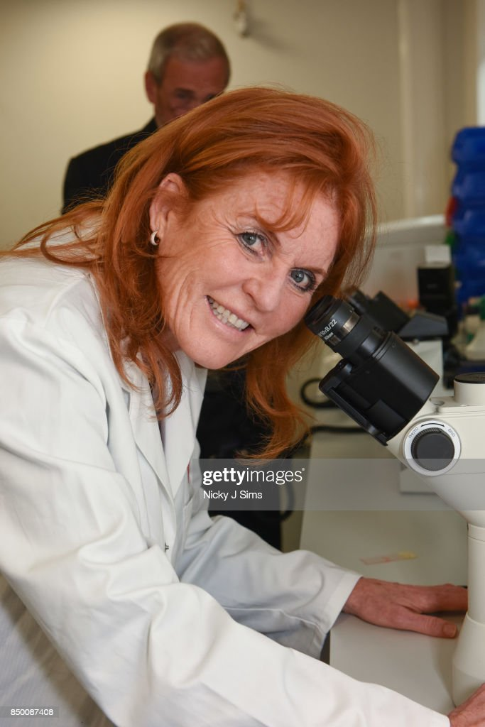 The Duchess Of York Official Appointment As BHF Ambassador