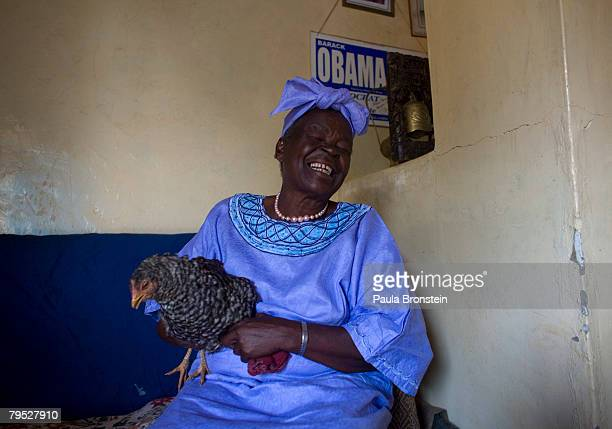 Sarah Hussein Obama the grandmother of US Presidential candidate Barack Obama holds a chicken in her home awaiting the results of Super Tuesday's...