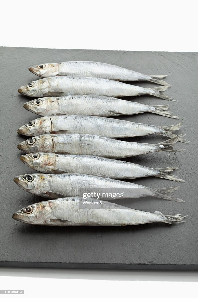 Sardines on chopping board : Stock Photo