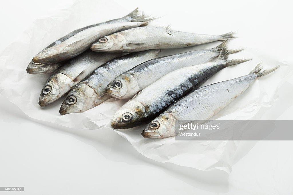 Sardines on wax paper