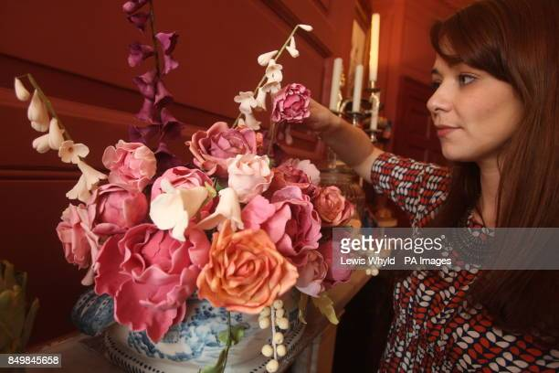 Sasha Eyre looks at a vase of edible roses deigned by Ms Cake Head who has created a Hansel and Gretel inspired wonderland allowing people to eat...