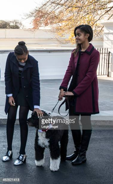 Sasha Obama and Malia Obama daughters of US President Barack Obama stand with the family dog Bo as the White House Christmas tree is presented at the...