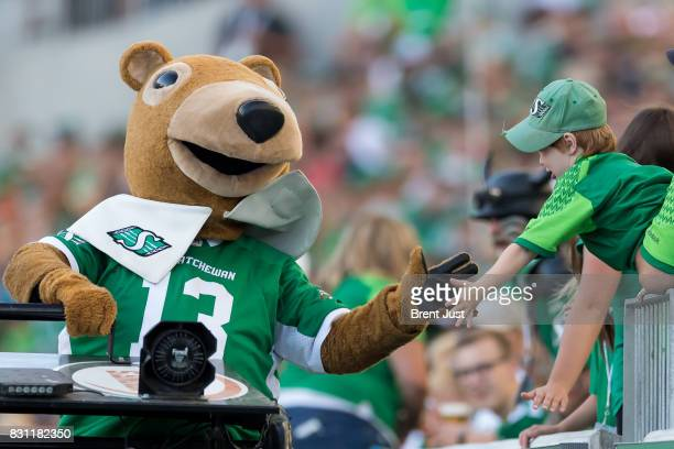 Saskatchewan Roughrider mascot Gainer the Gopher celebrates with the fans after a Roughrider touchdown in the game between the BC Lions and the...
