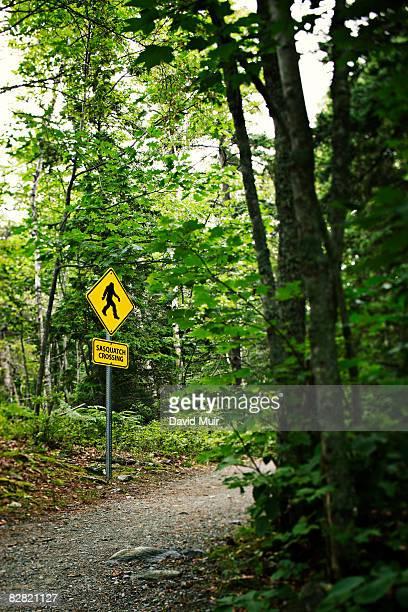 sasquatch sign