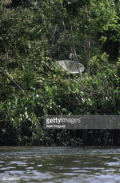 A satellite dish peeks out from the dense South American rainforest With the aid of a satellite dish a Brazilian family living in French Guiana can...