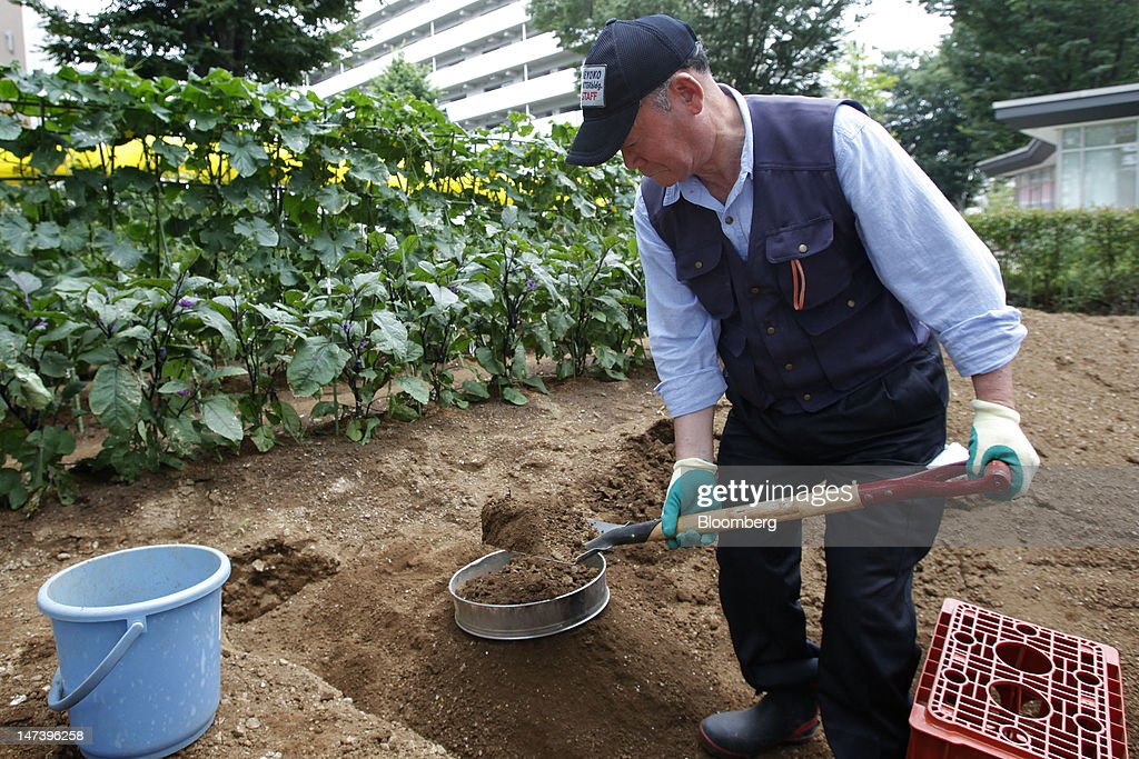 Satoshi Itsukaichi, 78, works in a vegetable garden at Kohitsuji-en Care Home in Kashiwa City, Chiba Prefecture, Japan, on Thursday, June 28, 2012. Japan ages faster than any other developed society, with 23 percent of the population 65 or older, according to government figures. Photographer: Kiyoshi Ota/Bloomberg via Getty Images