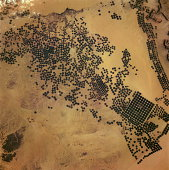 Center pivot farms are 200-acre circular farm fields in the desert. A 300-1200m (1,000-4,000ft) well is in the center, from which a sprinkler pivots and irrigates.Pivot farms began in the early 1980s