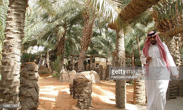 A Saudi man walks at a farm in the Hael desert around 700 kms north of downtown Riyadh 02 June 2007 Known for its old forts and historic structures...