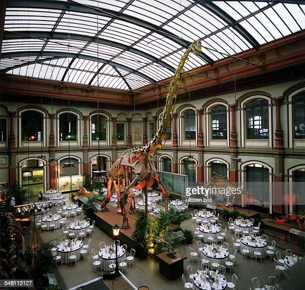 Saurierskelett im Museum an der Invalidenstrasse 1994